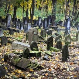 Przewodnik po Warszawie - dziedzictwo żydowskie